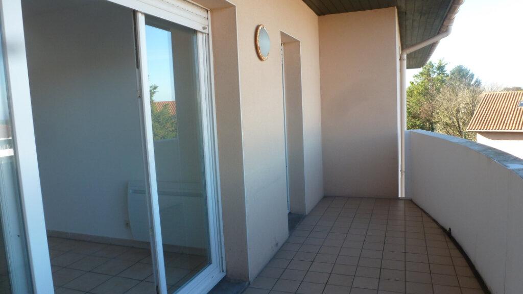 Appartement à louer 2 35m2 à Tarnos vignette-1