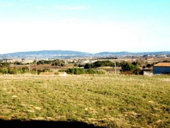 Terrain à vendre 0 1250m2 à La Livinière vignette-2