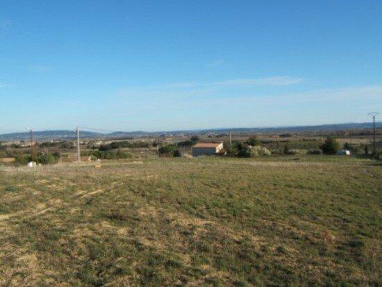 Terrain à vendre 0 1250m2 à La Livinière vignette-3