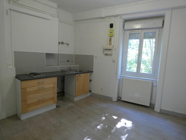 Appartement à louer 2 39m2 à Saint-Genis-Laval vignette-3