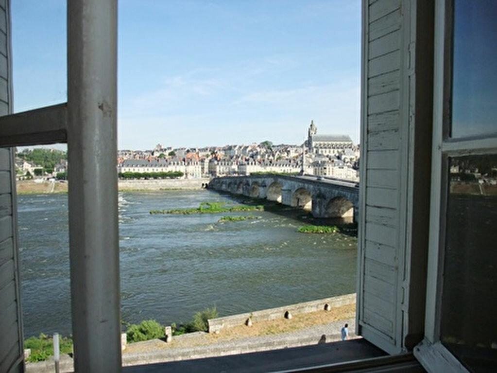 Appartement à louer 2 47m2 à Blois vignette-9