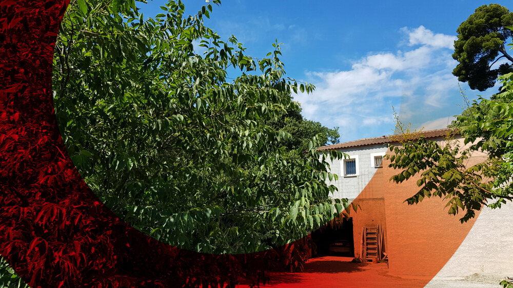 Appartement à vendre 2 39.15m2 à Montpellier vignette-5