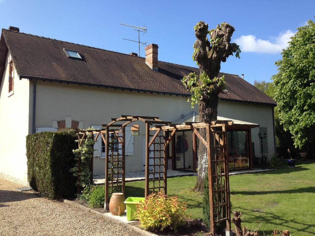 Maison à vendre 7 168.9m2 à Pruniers-en-Sologne vignette-2