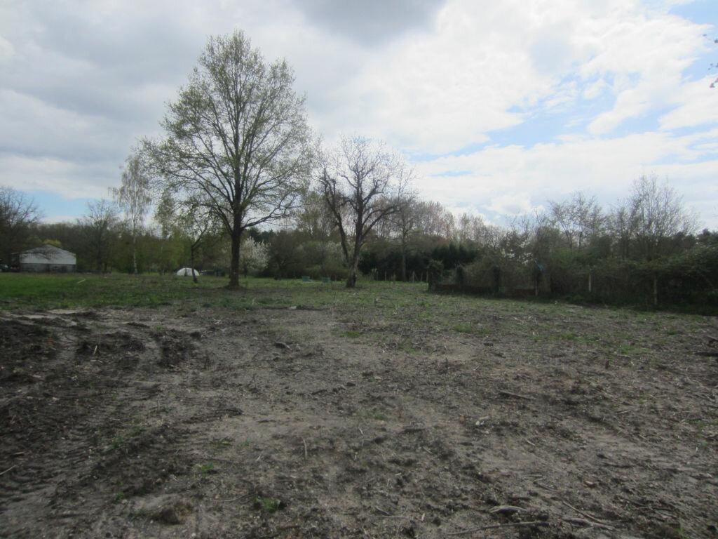 Terrain à vendre 0 1336m2 à Pruniers-en-Sologne vignette-2