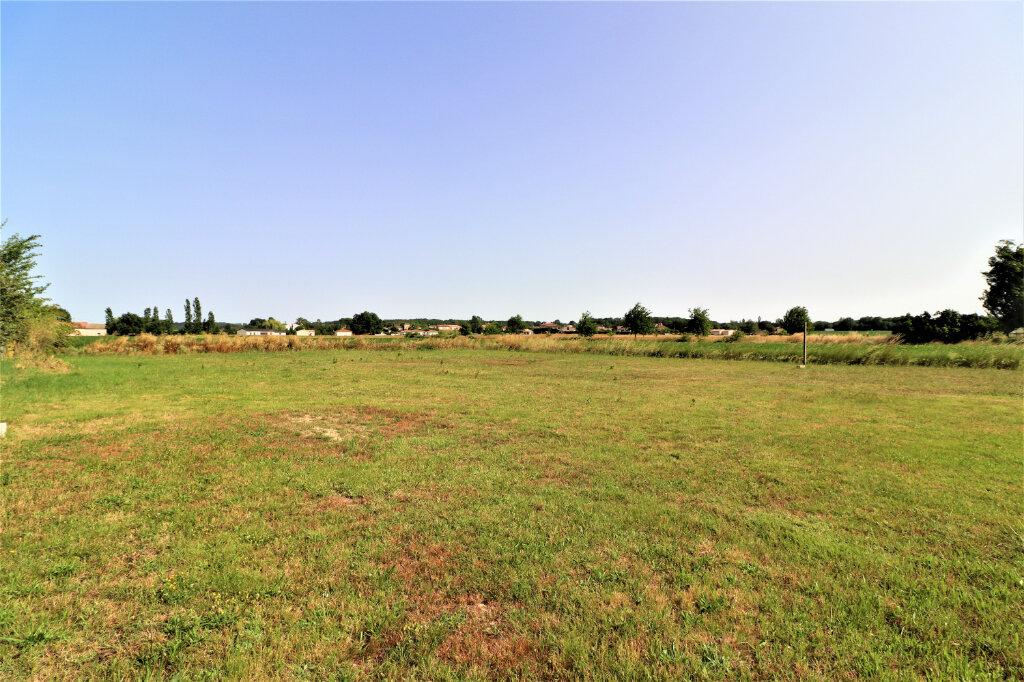 Terrain à vendre 0 1118m2 à Montastruc-la-Conseillère vignette-1