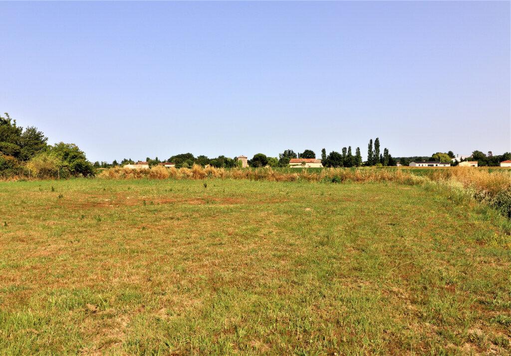 Terrain à vendre 0 1118m2 à Montastruc-la-Conseillère vignette-2