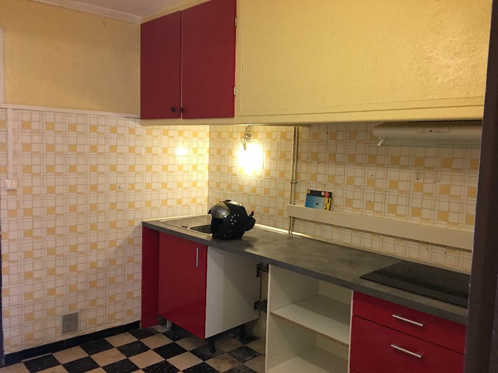 Appartement à louer 3 60m2 à Canohès vignette-9