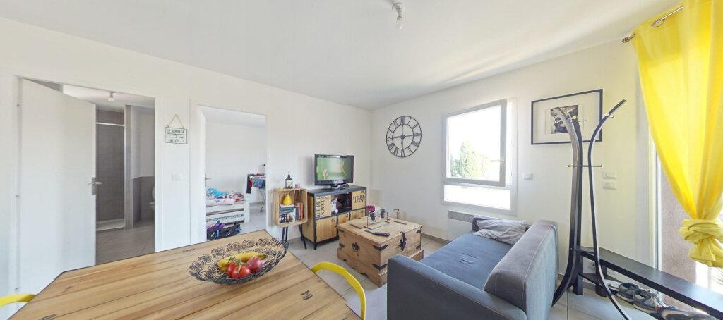 Appartement à louer 3 50m2 à Le Soler vignette-5