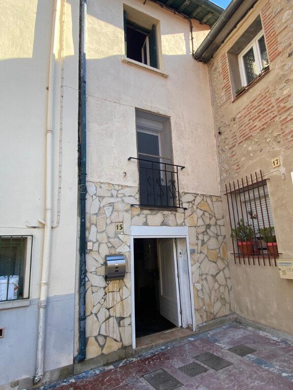 Maison à vendre 2 50m2 à Villeneuve-la-Rivière vignette-1