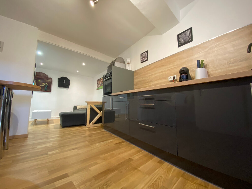 Maison à vendre 2 50m2 à Villeneuve-la-Rivière vignette-2