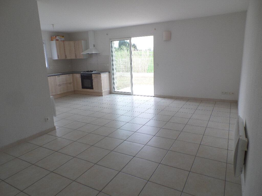 Appartement à louer 3 63m2 à Canohès vignette-1