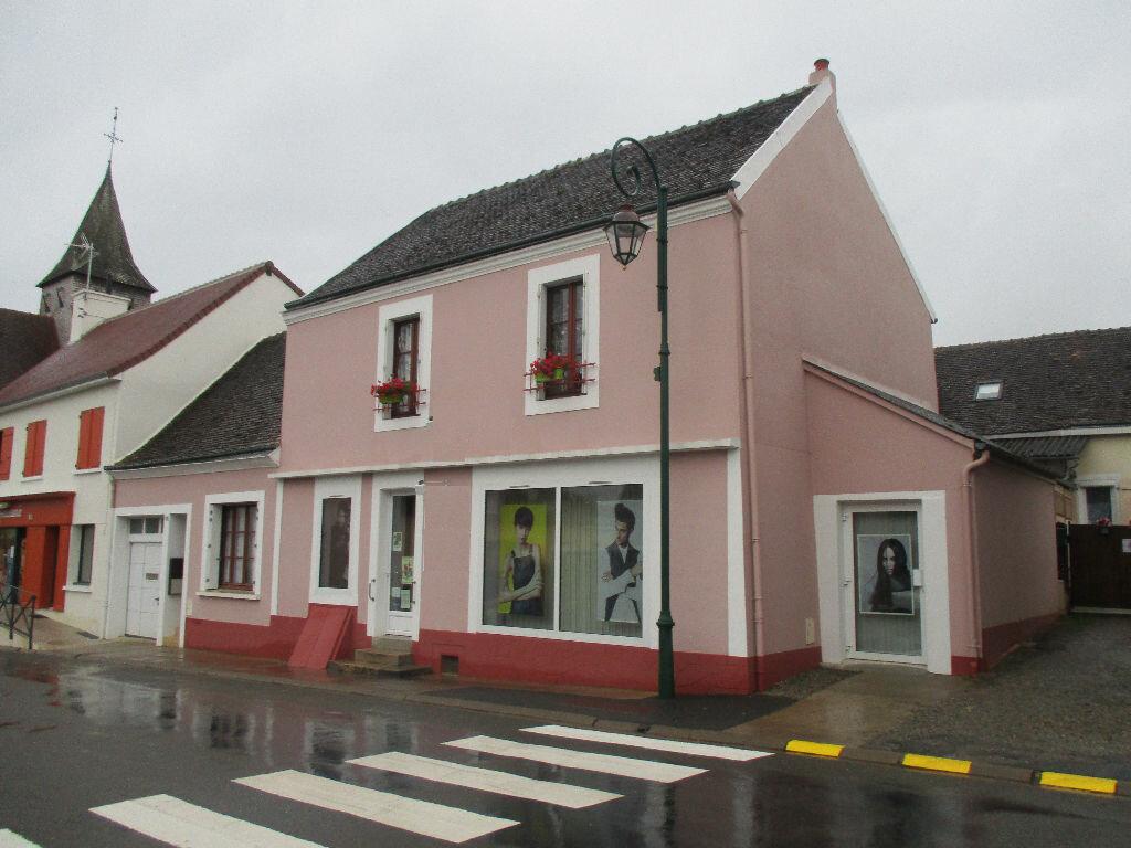 Maison à vendre 9 139m2 à Mézières-sur-Ponthouin vignette-1