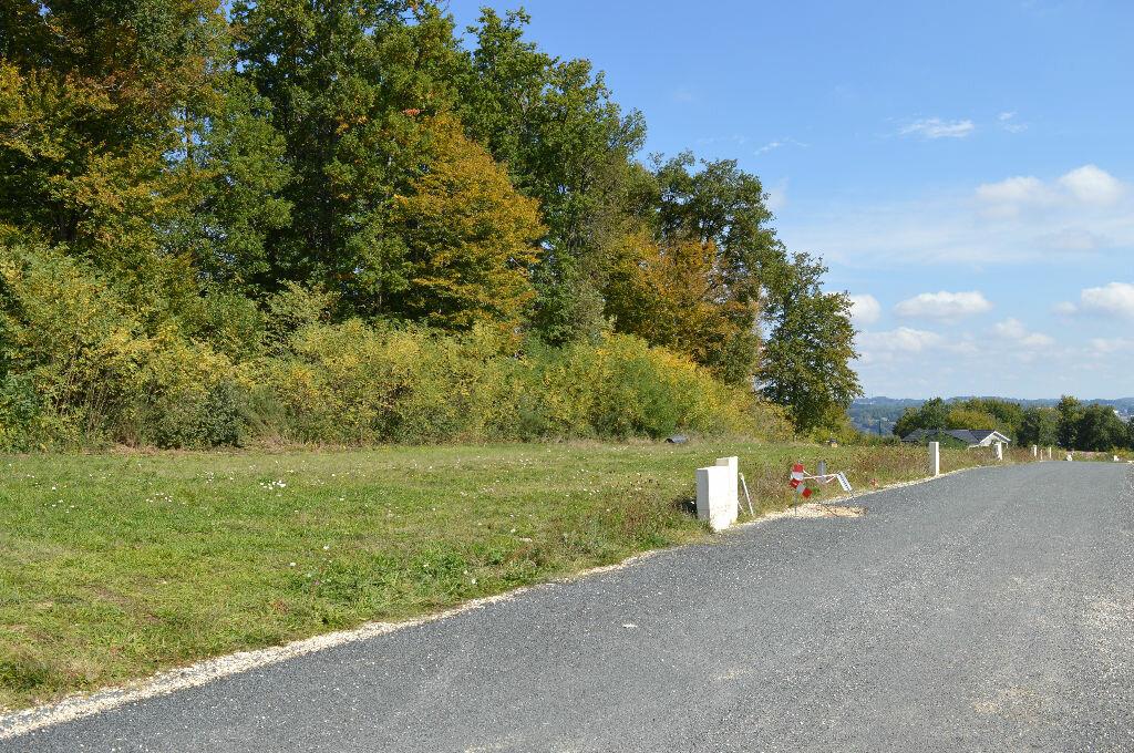 Achat Terrain  à Coulounieix-Chamiers - vignette-4