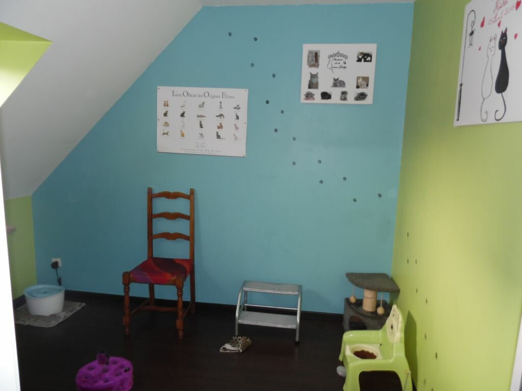 Achat Maison 6 pièces à Fresnes-sur-Escaut - vignette-8