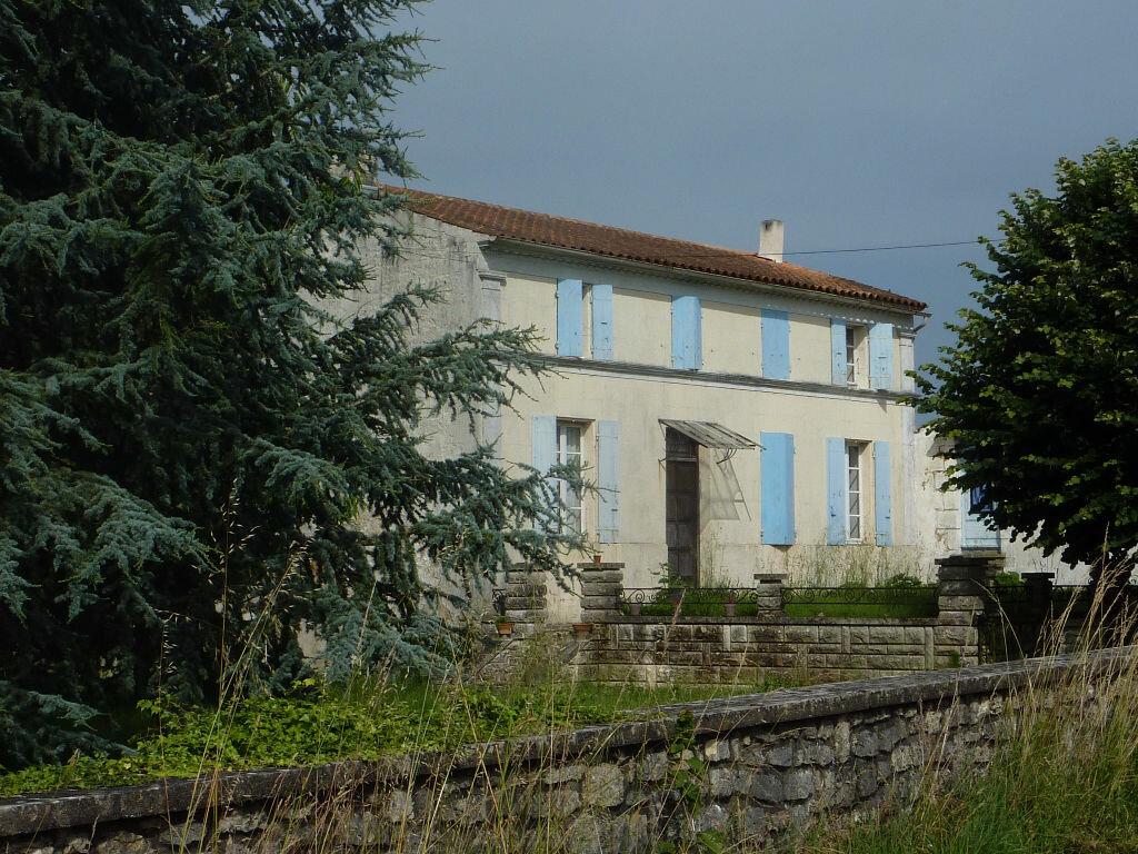 Achat Maison 7 pièces à Saint-Savinien - vignette-1