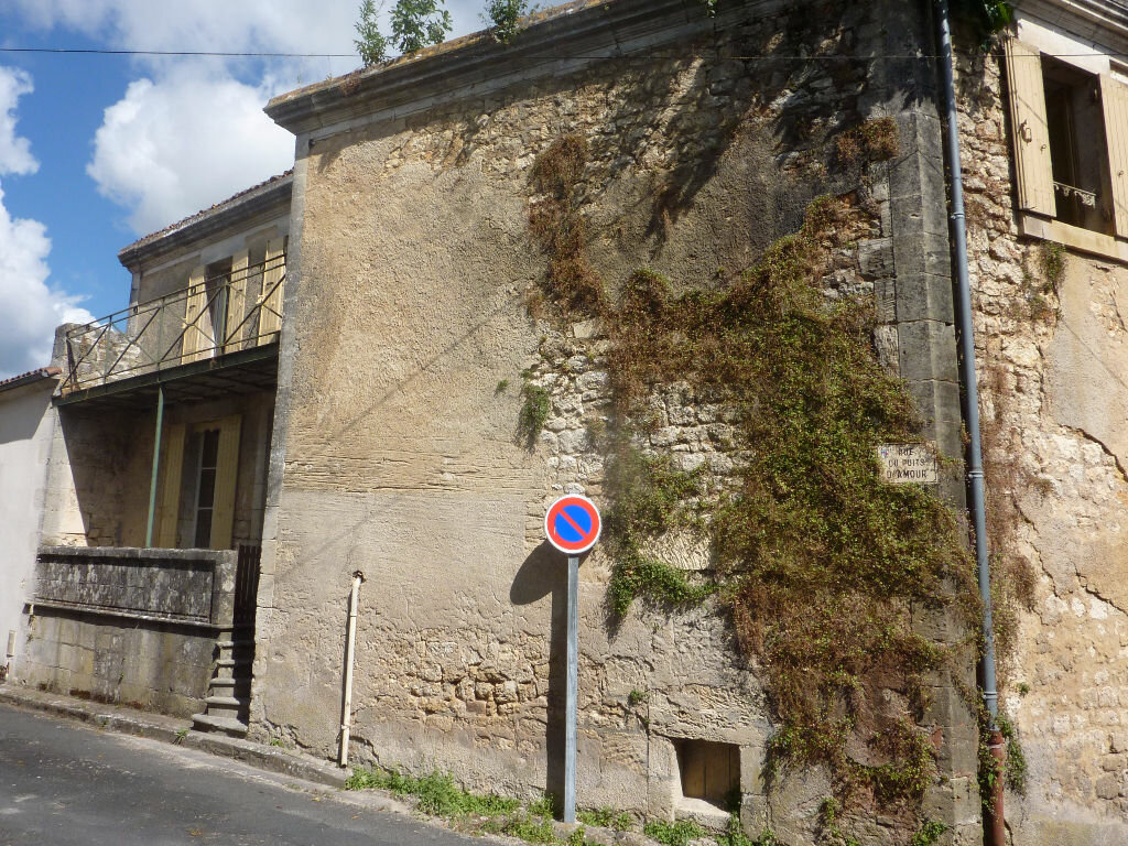 Achat Maison 5 pièces à Saint-Savinien - vignette-1