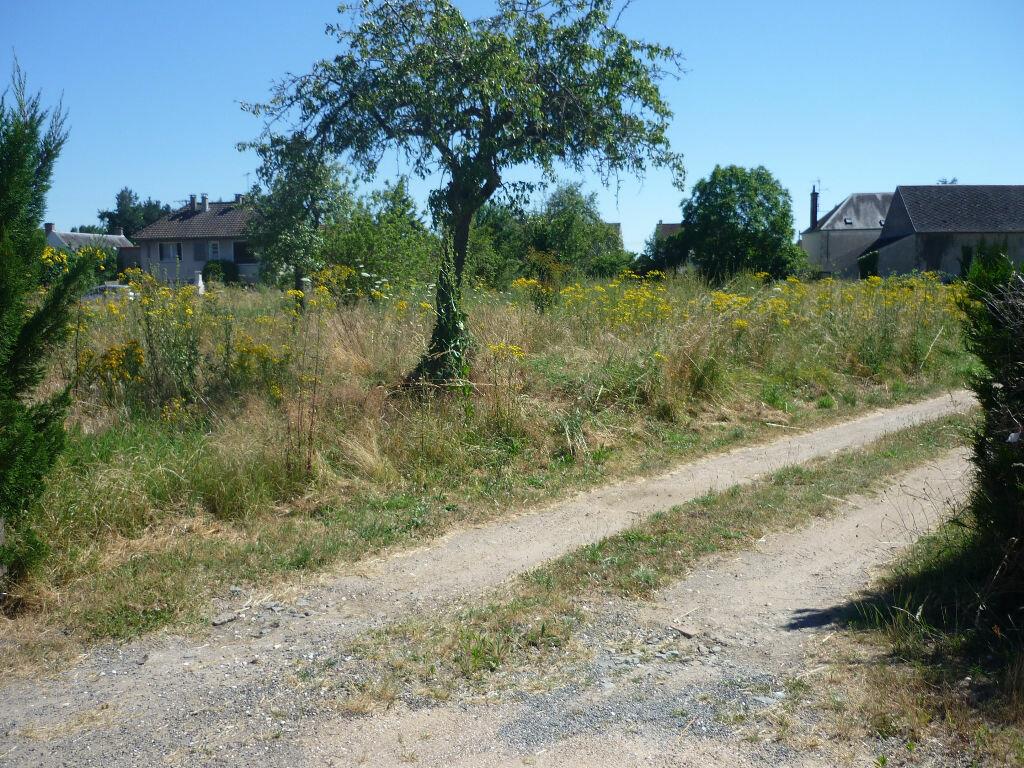Achat Terrain  à Germigny-des-Prés - vignette-1