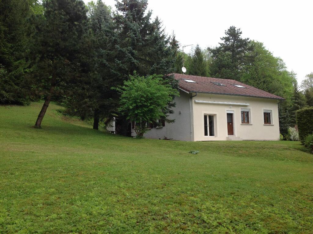 Achat Maison 6 pièces à Vigneulles-lès-Hattonchâtel - vignette-1