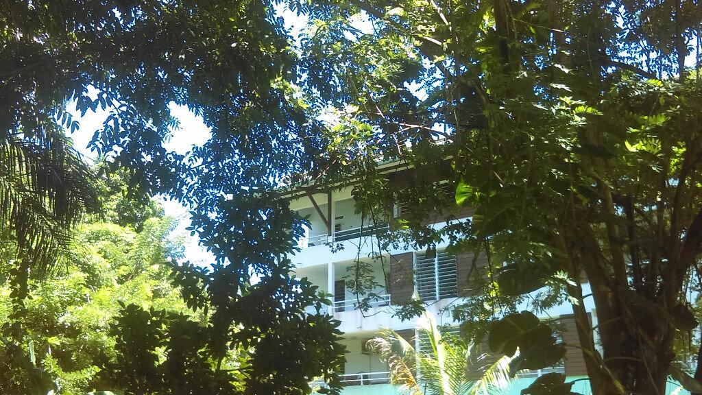 Achat Appartement 3 pièces à Cayenne - vignette-3