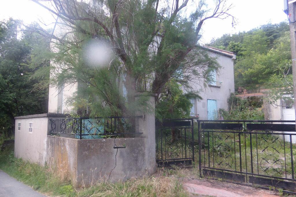 Achat Maison 5 pièces à Thurins - vignette-1