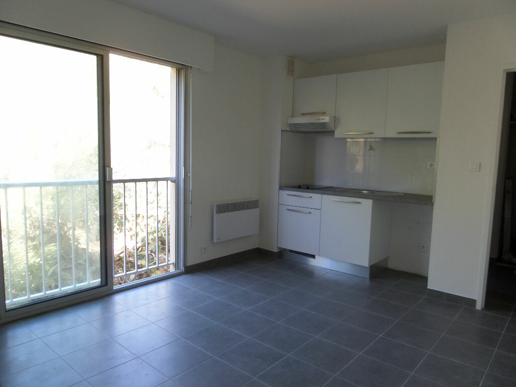 Location Appartement 1 pièce à Ajaccio - vignette-1