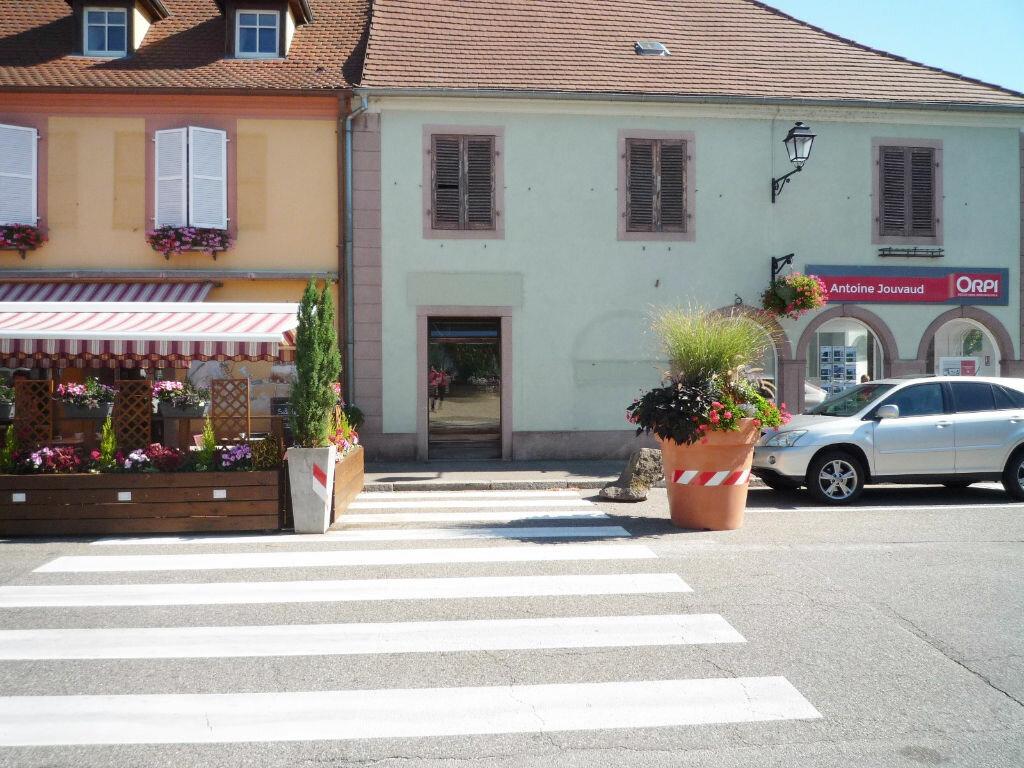 Location Local commercial  à Neuf-Brisach - vignette-1