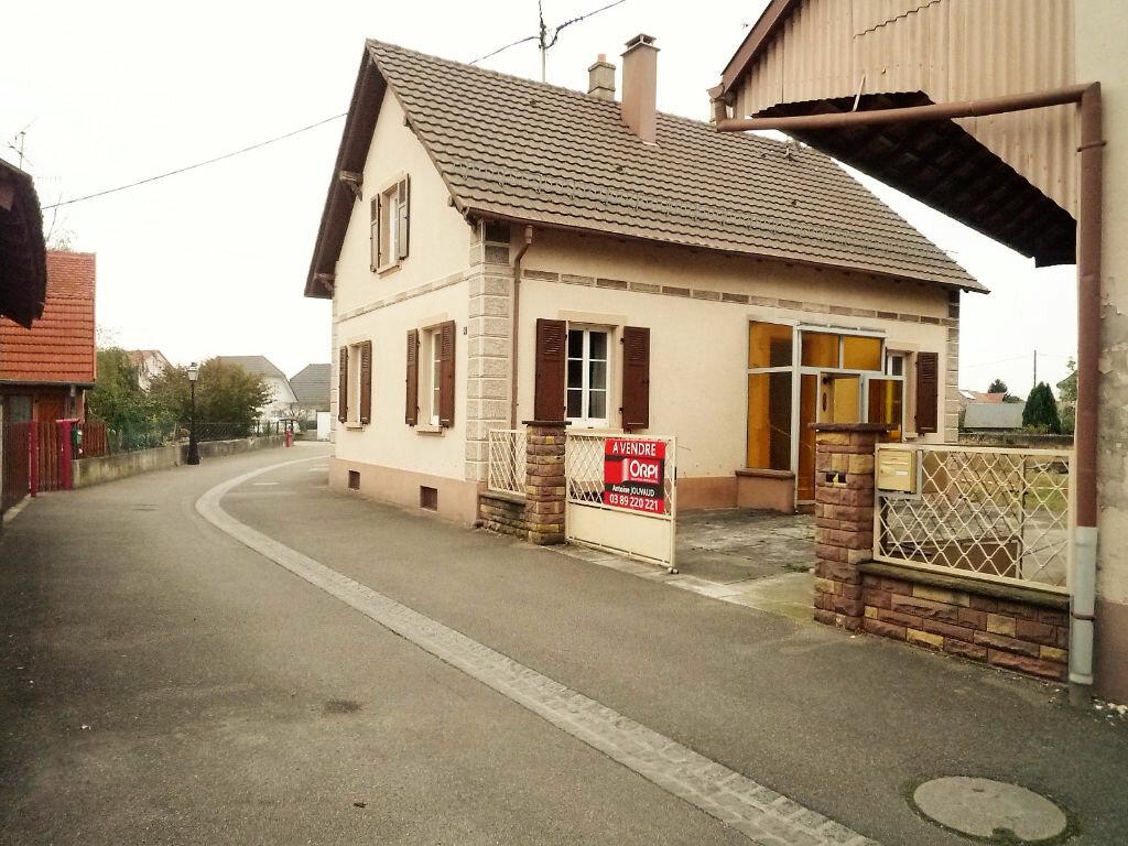 Achat Maison 3 pièces à Blodelsheim - vignette-1