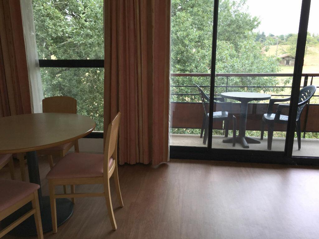 Achat Appartement 1 pièce à Rouffiac-Tolosan - vignette-1