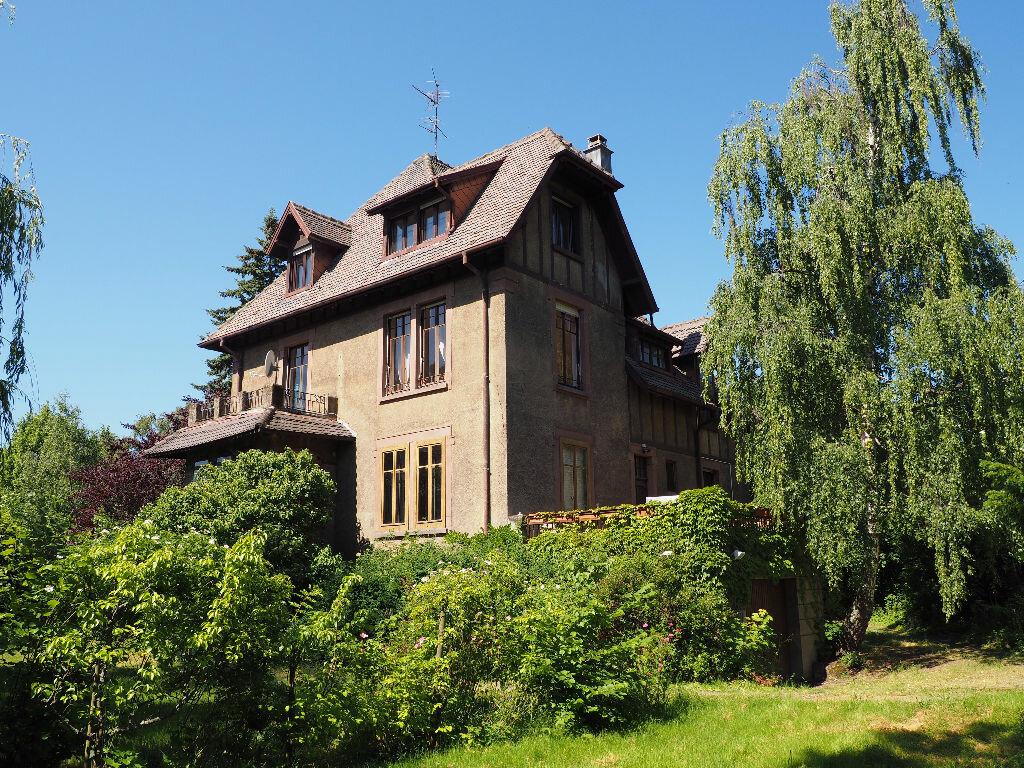 Achat Maison 9 pièces à Vieux-Thann - vignette-10