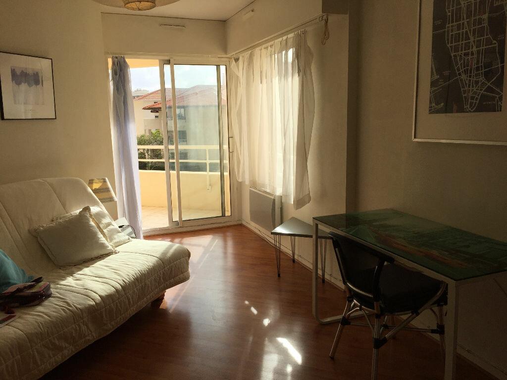 Location Appartement 1 pièce à Biarritz - vignette-1