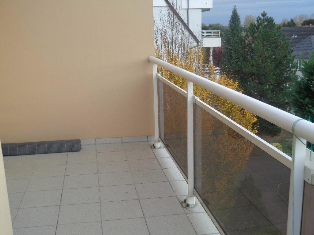 Location Appartement 3 pièces à Molsheim - vignette-5
