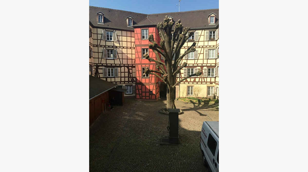 Achat Appartement 6 pièces à Strasbourg - vignette-1