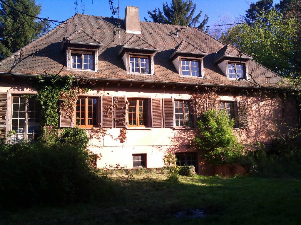 Achat Maison 8 pièces à Bouxwiller - vignette-1