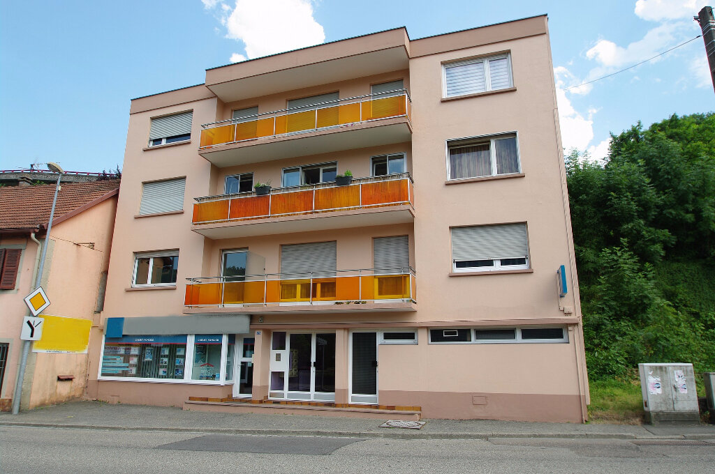 Achat Appartement 2 pièces à Schirmeck - vignette-1