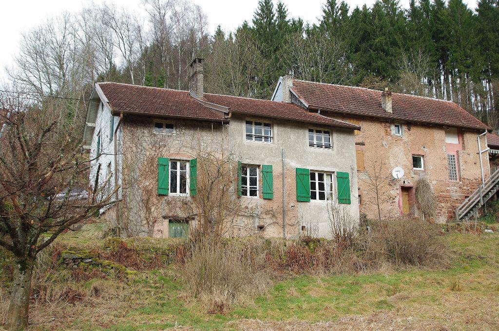 Achat Maison 7 pièces à Raon-lès-Leau - vignette-1