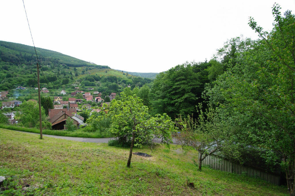 Achat Terrain  à Neuviller-la-Roche - vignette-1
