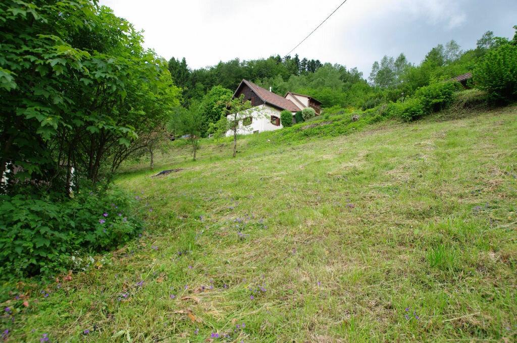 Achat Terrain  à Neuviller-la-Roche - vignette-3