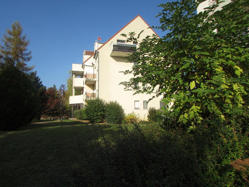 Achat Appartement 2 pièces à Obernai - vignette-2