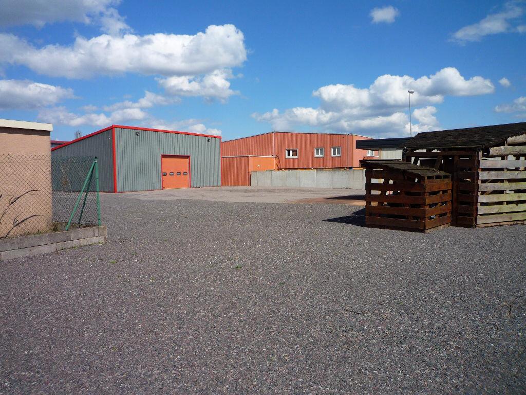 Achat Entrepôt  à Obernai - vignette-1
