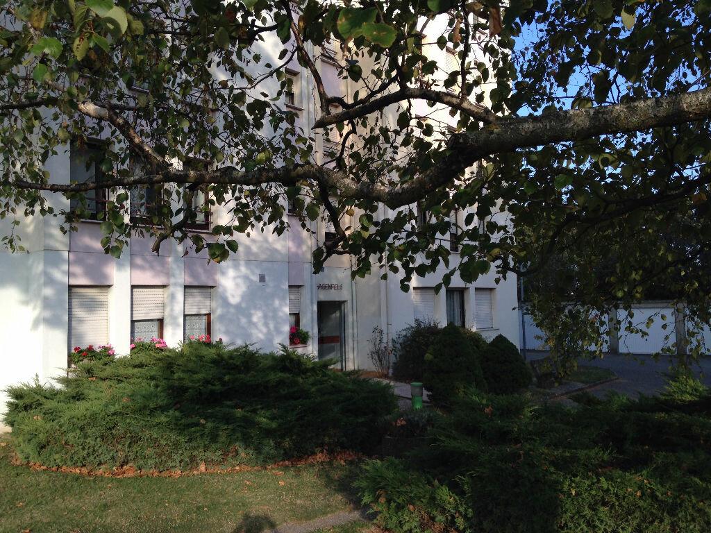 Location Appartement 2 pièces à Barr - vignette-1