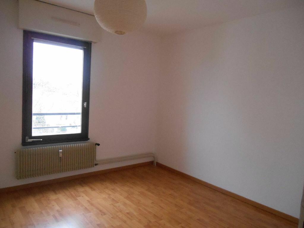 Location Appartement 2 pièces à Barr - vignette-4