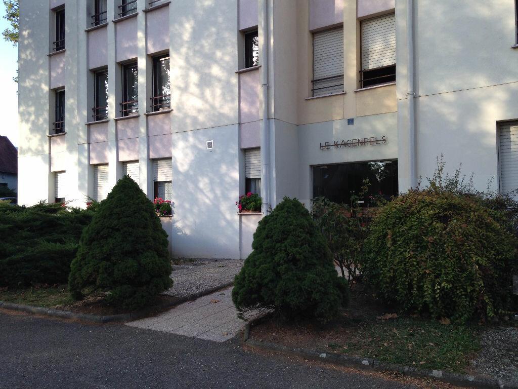 Location Appartement 2 pièces à Barr - vignette-6