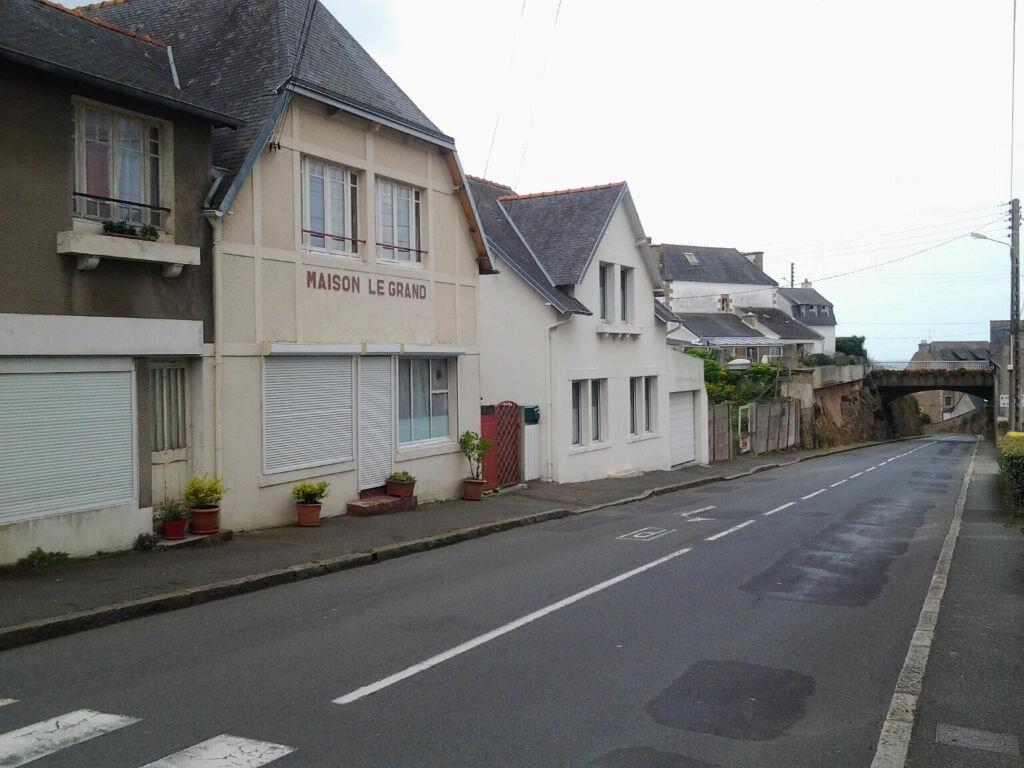 Achat Appartement 2 pièces à Trébeurden - vignette-9