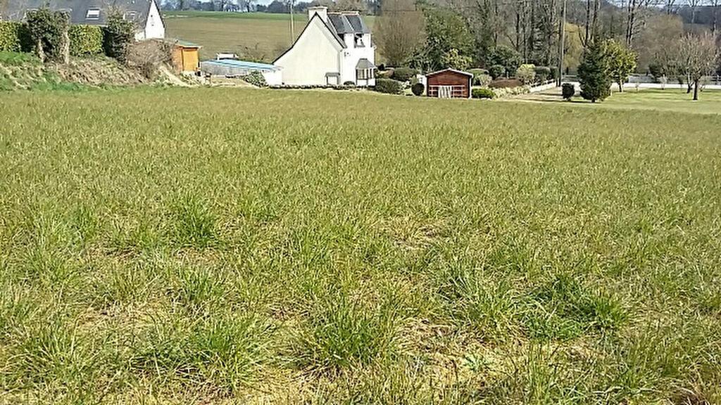 Achat Terrain  à Carhaix-Plouguer - vignette-1