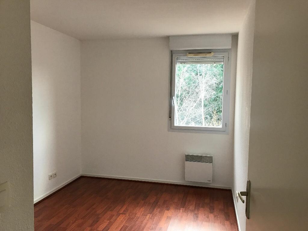 Location Appartement 3 pièces à Albi - vignette-4