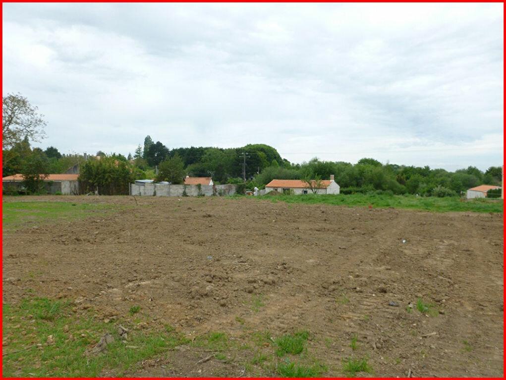 Achat Terrain  à Saint-Philbert-de-Grand-Lieu - vignette-1