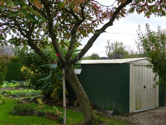 Achat Maison 3 pièces à Montfort-sur-Risle - vignette-5