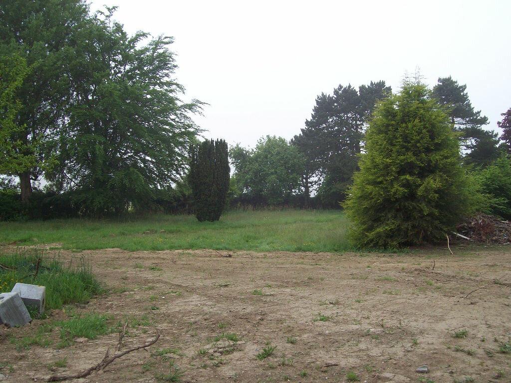 Achat Terrain  à Beaurepaire - vignette-1