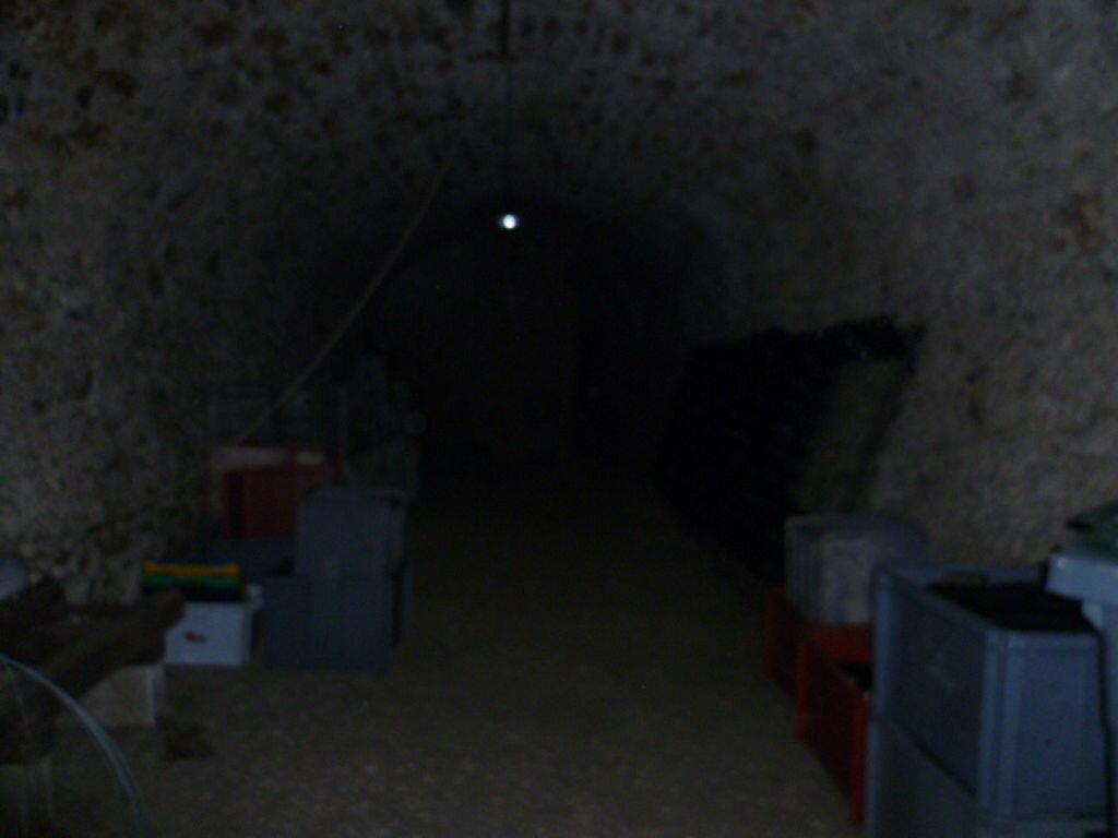 Achat Maison 5 pièces à Mareuil-sur-Ay - vignette-12