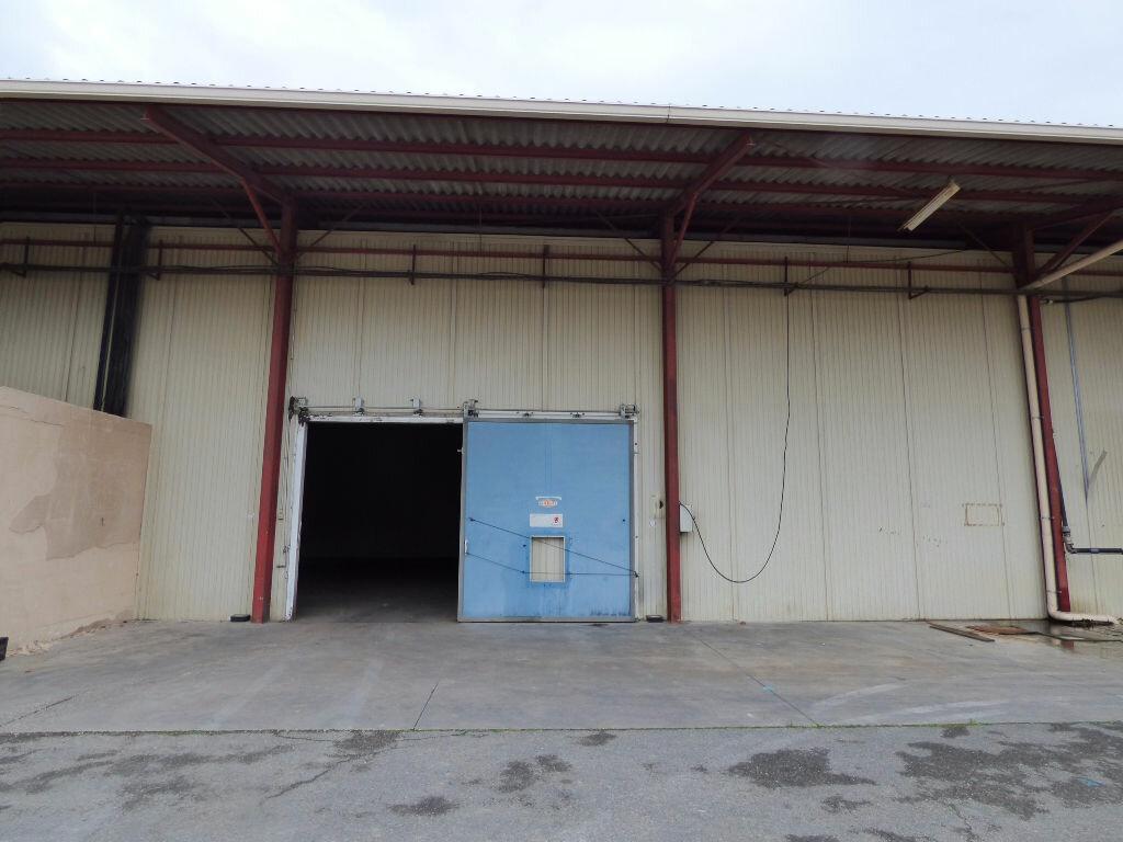 Achat Entrepôt  à Althen-des-Paluds - vignette-1